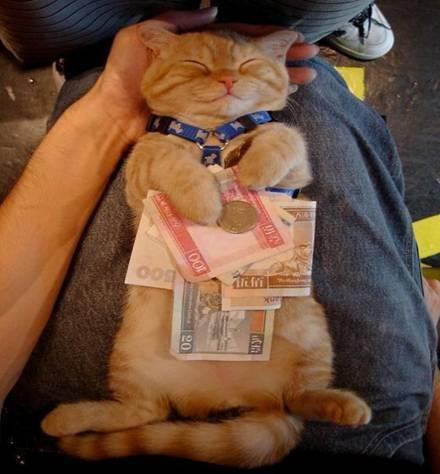 paham bahwa uang bukan segalanya